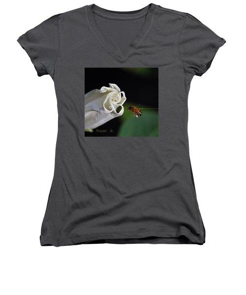 Angel Trumpet Women's V-Neck T-Shirt