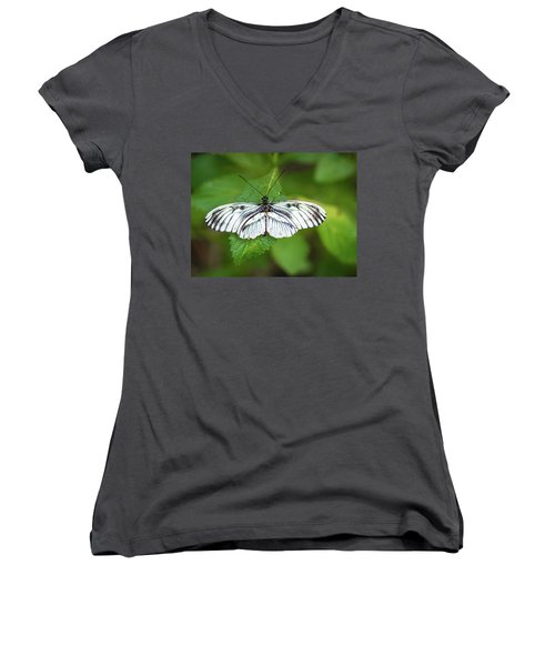 Angry Butterfly With A Mustache Women's V-Neck