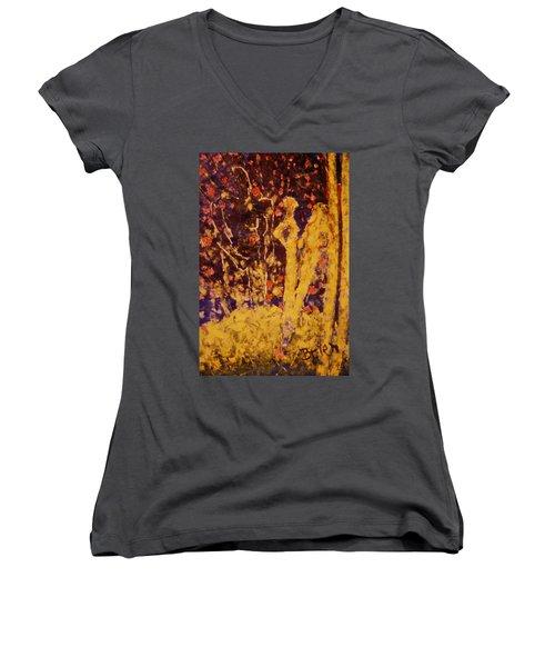 Animus Anima Women's V-Neck T-Shirt