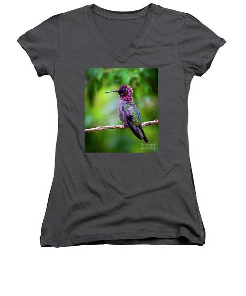 Anna Humming Bird Women's V-Neck