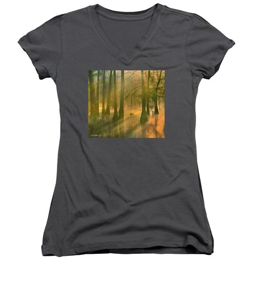 Another Day Women's V-Neck T-Shirt (Junior Cut) by Tim Fitzharris