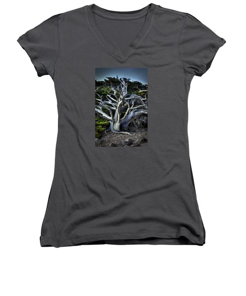 Ansel's Cypress Women's V-Neck (Athletic Fit)