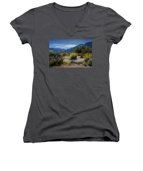 Women's V-Neck T-Shirt (Junior Cut) featuring the photograph Anza-borrego Desert State Park Desert Flowers by Randall Nyhof