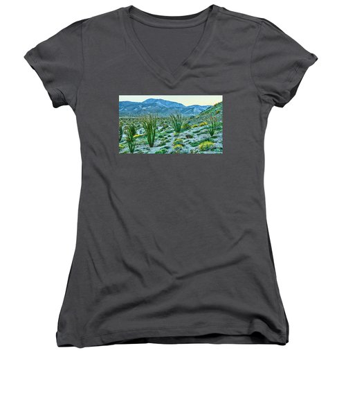 Anza Borrego Twillight Women's V-Neck (Athletic Fit)