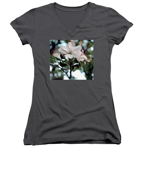 Women's V-Neck T-Shirt (Junior Cut) featuring the painting Apple Blossom Time by RC DeWinter