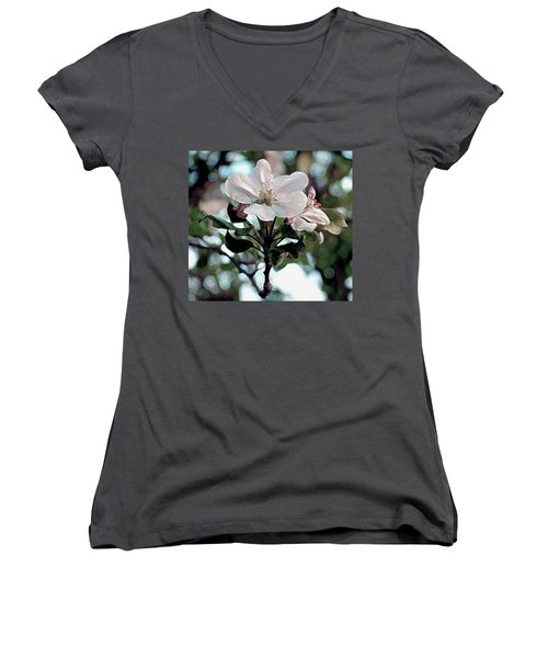 Apple Blossom Time Women's V-Neck T-Shirt (Junior Cut) by RC deWinter
