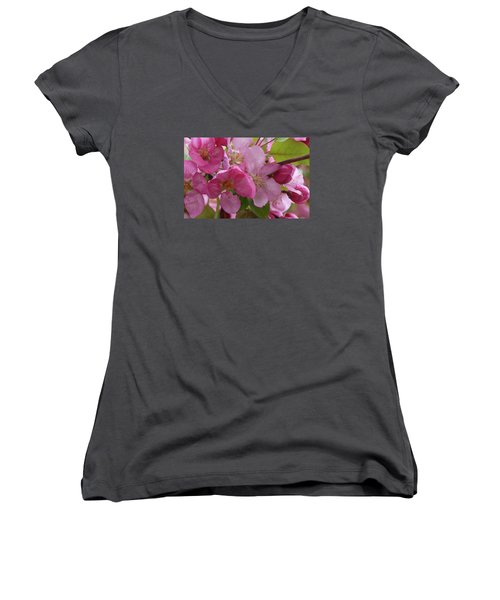 Apple Blossoms Women's V-Neck