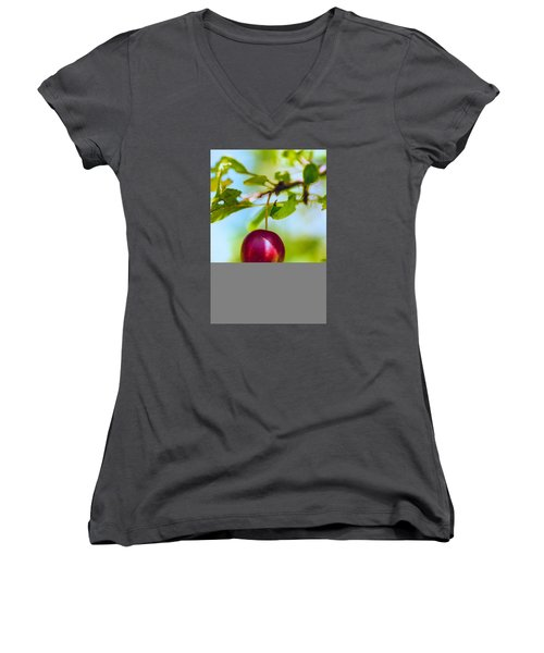 Crab Apple Women's V-Neck T-Shirt