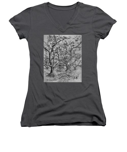 Apple Orchard Women's V-Neck T-Shirt (Junior Cut) by Jim Hubbard