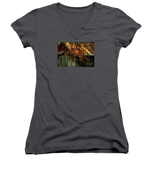 Apple Picking Time Women's V-Neck T-Shirt (Junior Cut) by Sherman Perry