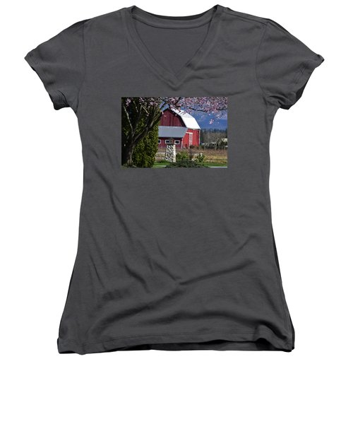 Apple Tree Pink And Barn Red Women's V-Neck