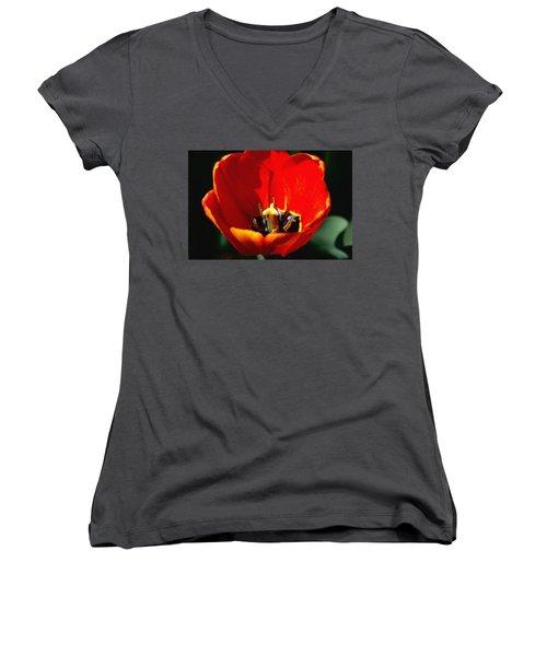 April Tulips Women's V-Neck