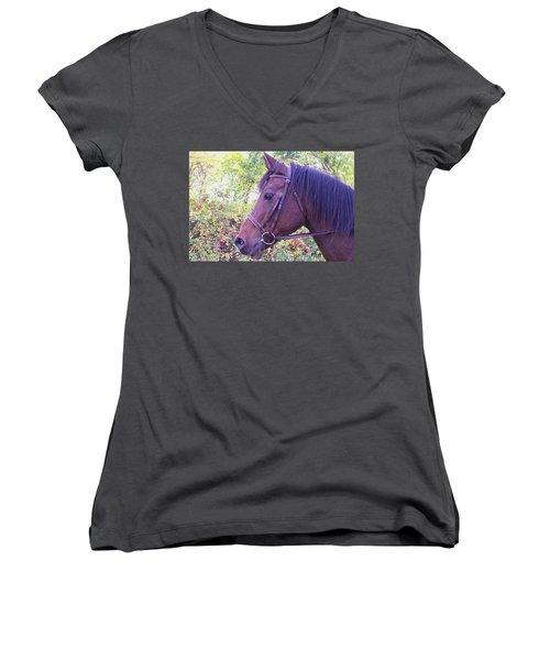 Women's V-Neck T-Shirt (Junior Cut) featuring the digital art Arabian Beauty by Barbara S Nickerson