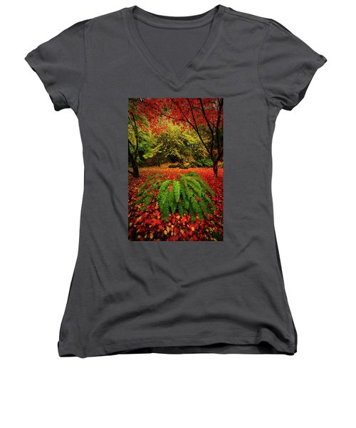 Arboretum Primary Colors Women's V-Neck (Athletic Fit)