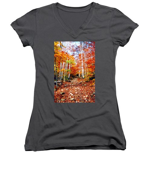 Arethusa Falls Trail Women's V-Neck T-Shirt (Junior Cut) by Greg Fortier