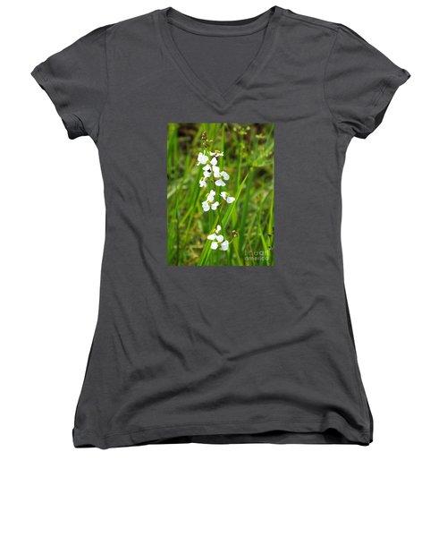 Arrowhead 2 Women's V-Neck T-Shirt (Junior Cut) by Audrey Van Tassell