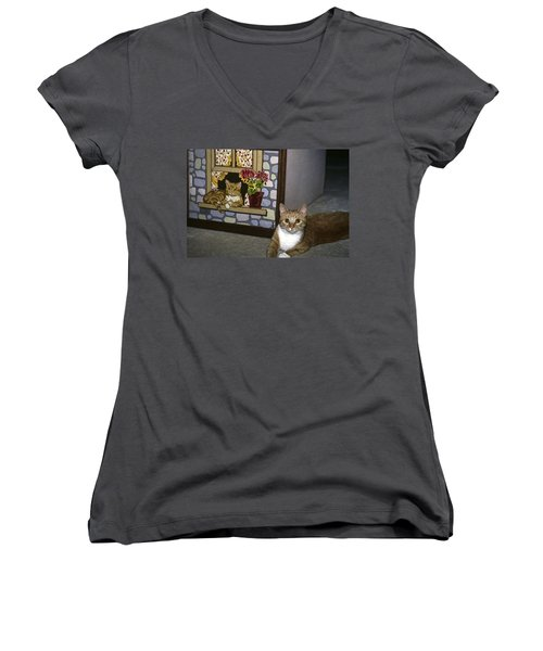Women's V-Neck T-Shirt (Junior Cut) featuring the photograph Art Imitates Life by Sally Weigand