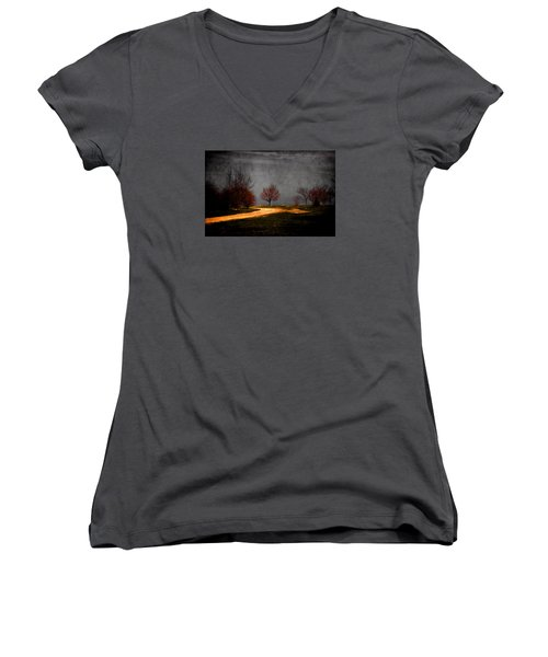 Art In The Park Women's V-Neck T-Shirt (Junior Cut) by Milena Ilieva