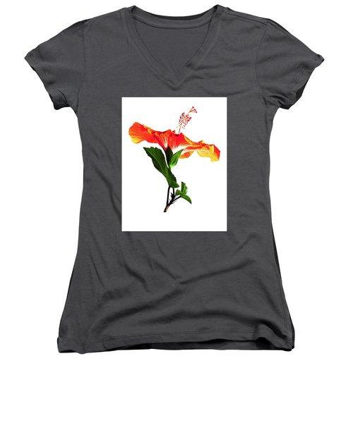 Art Orange Women's V-Neck