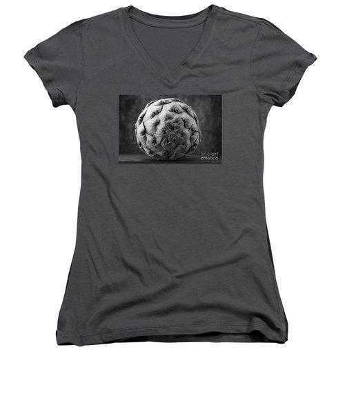 Artichoke Black And White Still Life Two Women's V-Neck T-Shirt (Junior Cut) by Edward Fielding