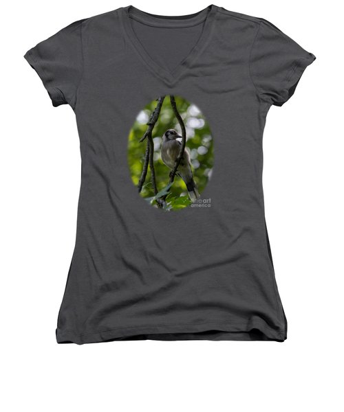 Afternoon Perch Women's V-Neck T-Shirt (Junior Cut) by Brian Manfra