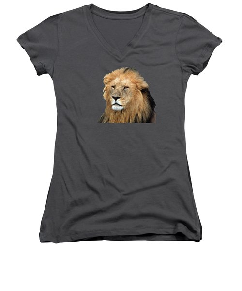 Masai Mara Lion Portrait    Women's V-Neck T-Shirt (Junior Cut) by Aidan Moran