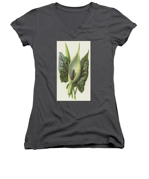 Arum, Cuckoo Pint Women's V-Neck T-Shirt (Junior Cut) by Frederick Edward Hulme