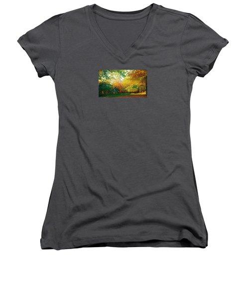 Ashridge Autumn Women's V-Neck T-Shirt (Junior Cut) by Anne Kotan
