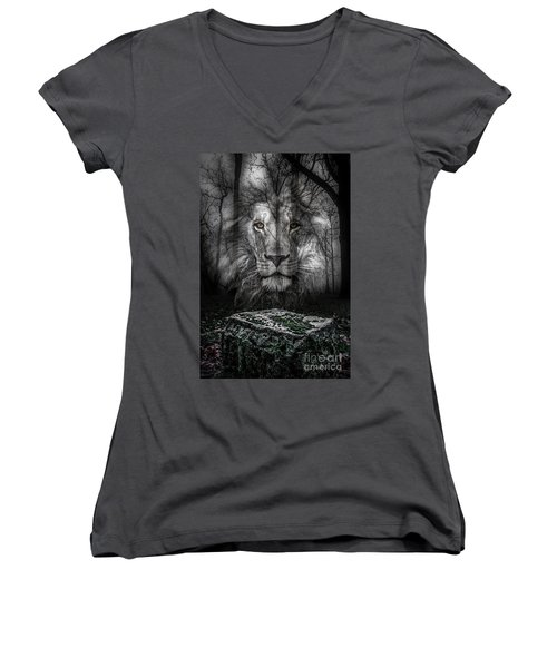 Aslan And The Stone Table Women's V-Neck