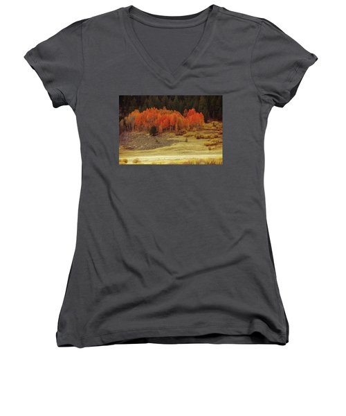 Aspen, October, Hope Valley Women's V-Neck T-Shirt (Junior Cut) by Michael Courtney