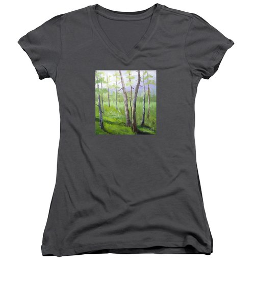 Aspens Soaring Women's V-Neck T-Shirt (Junior Cut)