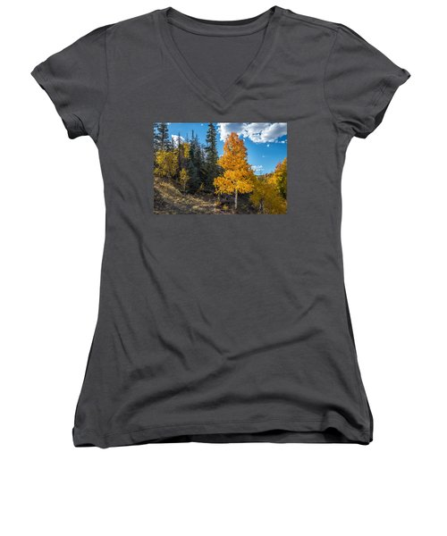 Aspen Tree In Fall Colors San Juan Mountains, Colorado. Women's V-Neck T-Shirt (Junior Cut) by John Brink