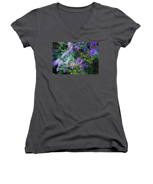 Aster 4468 Idp_2 Women's V-Neck (Athletic Fit)