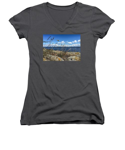At Point Lawrence Women's V-Neck T-Shirt