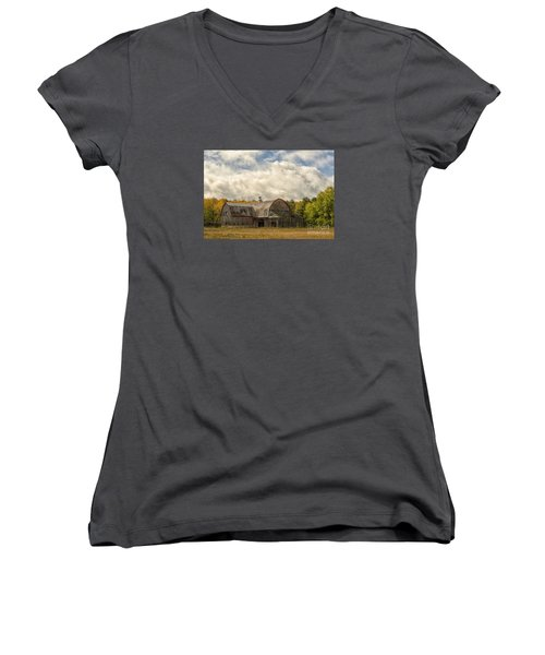 At The Edge Of The Medow Women's V-Neck T-Shirt (Junior Cut) by JRP Photography