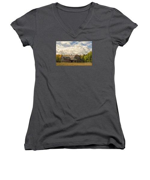 At The Edge Of The Medow Women's V-Neck T-Shirt