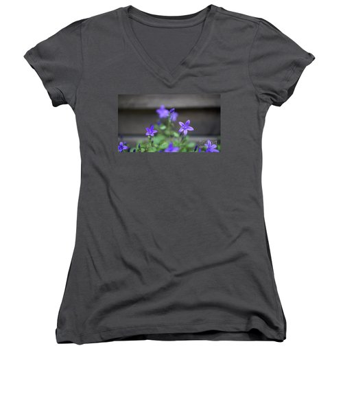 At The Fence Women's V-Neck (Athletic Fit)