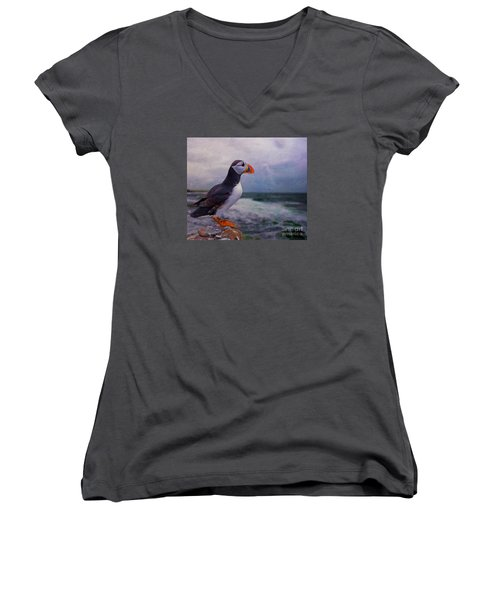 Atlantic Puffin Women's V-Neck T-Shirt (Junior Cut) by Jim  Hatch