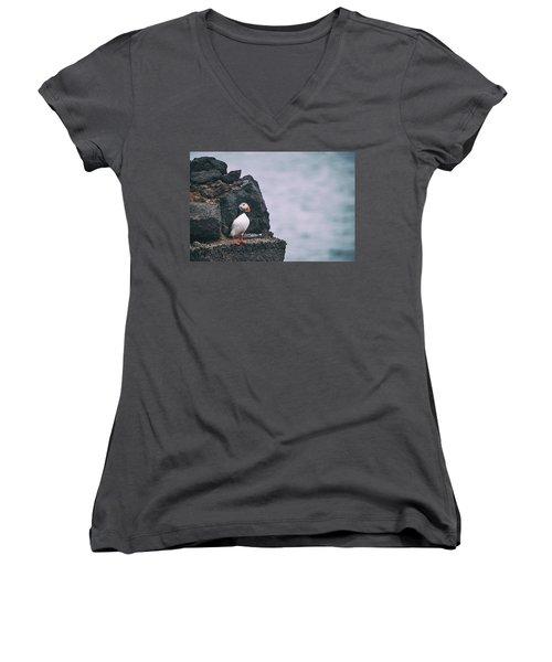 Atlantic Puffin Women's V-Neck T-Shirt (Junior Cut)