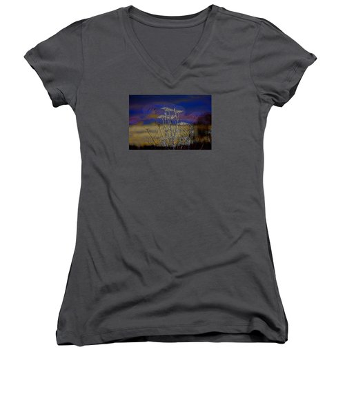 Autumn Abstract  Women's V-Neck T-Shirt (Junior Cut) by Leif Sohlman