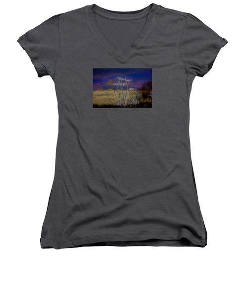 Autumn Abstract  Women's V-Neck T-Shirt (Junior Cut)