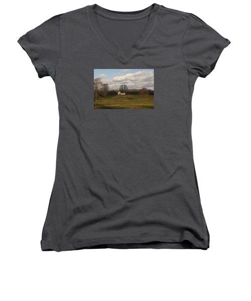 Autumn Barn On The Meadow Women's V-Neck T-Shirt (Junior Cut)