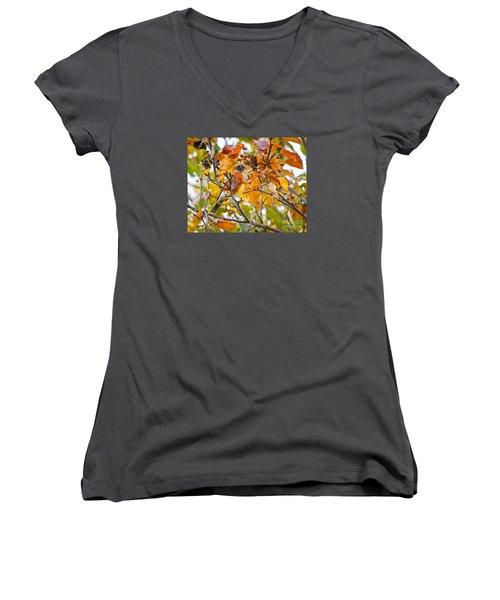 Autumn Blends Women's V-Neck T-Shirt (Junior Cut) by Kerri Farley