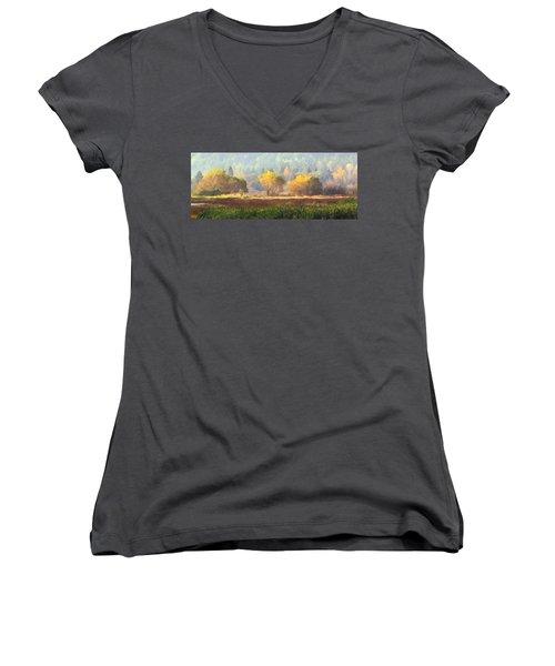 Autumn Bouquet Women's V-Neck T-Shirt