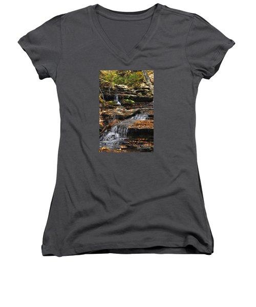 Autumn Brook Women's V-Neck T-Shirt