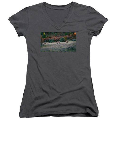 Autumn Bull Elk Women's V-Neck T-Shirt (Junior Cut) by Jason Coward