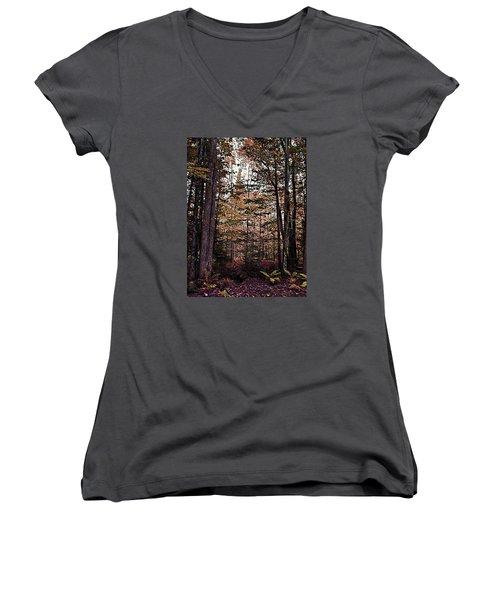 Autumn Color In The Woods Women's V-Neck T-Shirt (Junior Cut) by Joy Nichols