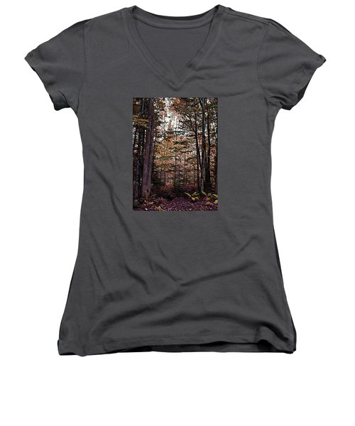 Autumn Color In The Woods Women's V-Neck (Athletic Fit)