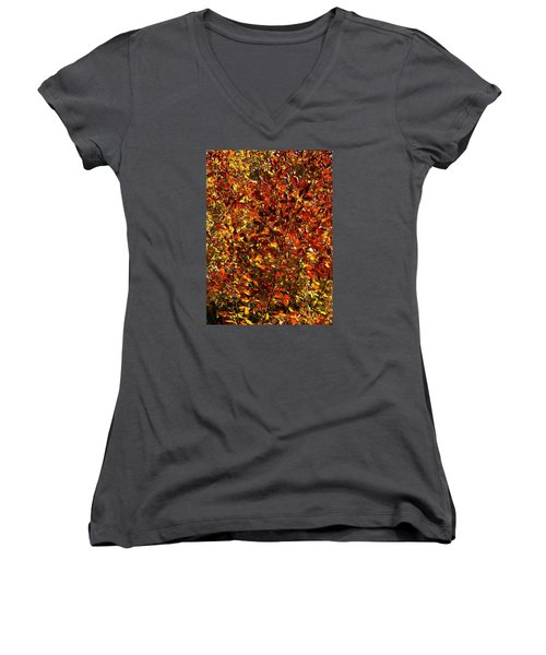 Autumn Colors Women's V-Neck T-Shirt (Junior Cut) by Karen Harrison