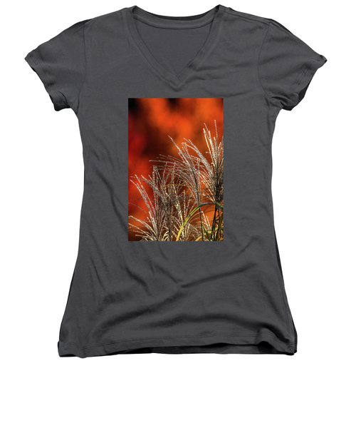 Autumn Fire - 1 Women's V-Neck